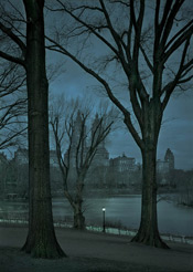 Asleep #2, Dawn, Central Park, NYC from the Deep in a Dream series)