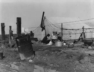 Woman Washing, Migrant Camp
